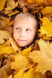 Imagem da cara do menino alegre entre as folhas amarelas imagens de stock royalty free