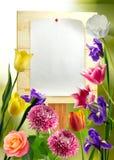 imagem da folha de papel na placa de madeira Imagens de Stock