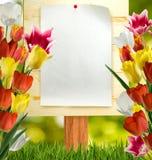 imagem da folha de papel na placa de madeira Imagem de Stock Royalty Free