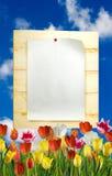 imagem da folha de papel na placa de madeira Fotos de Stock