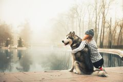 Imagem da moça com seu cão, malamute do Alasca, exterior imagem de stock royalty free