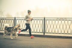 Imagem da moça que corre com seu cão, malamute do Alasca Foto de Stock Royalty Free