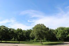 Imagem da natureza para Sugar Land Memorial Park e o corredor do Rio Brazos imagem de stock