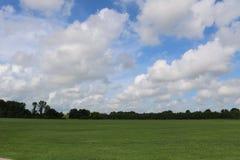 Imagem da natureza para Sugar Land Memorial Park e o corredor do Rio Brazos imagens de stock royalty free