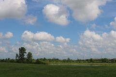 Imagem da natureza para Sugar Land Memorial Park e o corredor do Rio Brazos imagem de stock royalty free