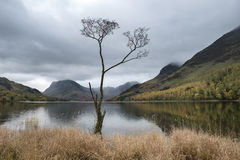 Imagem da paisagem de Stuning Autumn Fall do lago Buttermere no lago D foto de stock royalty free