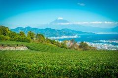 Imagem da paisagem do Mt Fuji com campo do chá verde no dia em Shizuoka, Japão imagem de stock