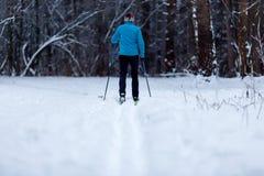 Imagem da parte traseira do atleta do esquiador na floresta no inverno imagens de stock royalty free