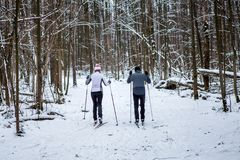 Imagem da parte traseira dos esportes mulher e do esqui do homem na floresta do inverno fotos de stock