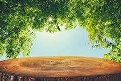a imagem da tabela de madeira em árvores de floresta verdes dianteiras ajardina o fundo Imagens de Stock