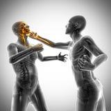 Imagem da varredura da radiografia dos homens do encaixotamento Fotografia de Stock