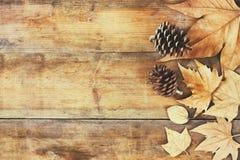 Imagem da vista superior das folhas de outono e dos cones do pinho sobre o fundo textured de madeira Imagens de Stock Royalty Free