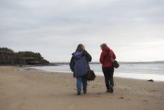 Imagem da vista traseira de um par fêmea maduro que anda ao longo da praia Imagens de Stock