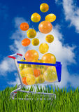imagem das laranjas, dos limões e das laranjas em um trole foto de stock royalty free