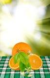 Imagem das laranjas na tabela fotografia de stock
