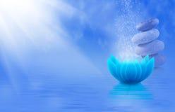 Imagem das pedras e da flor de lótus no close-up da água, Imagens de Stock