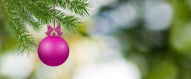 Imagem de bolas do Natal Fotografia de Stock