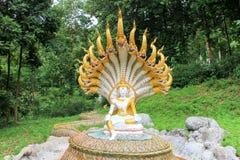 Imagem de buddha do Naga Fotos de Stock