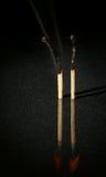 Imagem de dois fósforos eretos Imagem de Stock