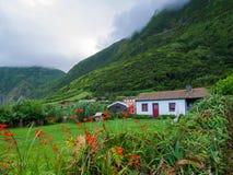 Imagem de flores coloridas bonitas com casa e a montanha nevoenta da floresta no fundo Açores Portugal fotos de stock