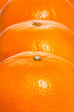 Imagem de frutas alaranjadas Fotografia de Stock Royalty Free