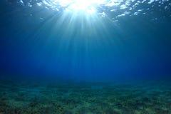 Fundo subaquático foto de stock royalty free