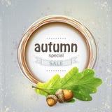 A imagem de fundo para a venda grande do outono com carvalho sae com as bolotas Imagens de Stock