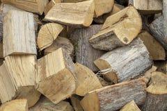 Imagem de fundo simples da foto de logs secos do vidoeiro foto de stock royalty free
