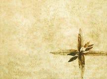 Imagem de fundo Textured com flora Foto de Stock Royalty Free