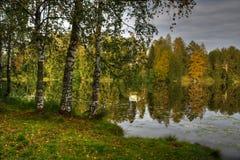 Imagem de HDR da costa do lago Fotografia de Stock