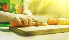Imagem de Hdr de cenouras do corte da criança das mãos Imagens de Stock