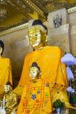 Imagem de Kakusandha buddha coberta com o foilgold Imagem de Stock