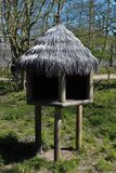 Imagem de Knuthenborg Safari Park em Maribo, Dinamarca imagens de stock royalty free