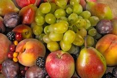 Imagem de muitos frutos e bagas foto de stock royalty free