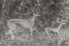 Imagem de N de animais antigos na parede da caverna imagens de stock