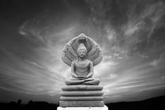 Imagem de pedra bonita da Buda coberta com as sete cabeças, nivelando s Fotografia de Stock