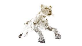 A imagem de um gepard Fotos de Stock