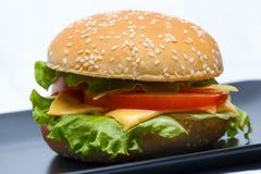 Imagem de um hamburguer casa-feito do vegetariano com os ingredientes carne-livres frescos fotos de stock