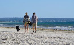 Imagem de um par com seu cão que anda na praia imagem de stock royalty free