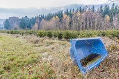 imagem de uma banheira azul velha que encontra-se em um prado com água e as folhas de posição fotos de stock royalty free