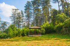A imagem de uma cume com grama verde, as árvores altas no fundo, o céu azul, um banco de madeira, e uma cabana pequena deram form imagens de stock royalty free