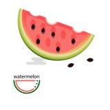 Imagem de uma melancia ao estilo da melancia lisa e estilizado em um estilo linear Imagens de Stock Royalty Free