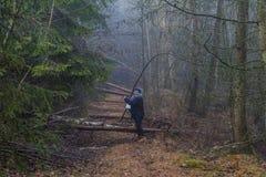 Imagem de uma mulher que pergunta se pode seguir um trajeto que esteja obstruído por troncos de árvore caídos foto de stock