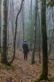 Imagem de uma posição da mulher que olha a estrada entre pinheiros altos na floresta imagens de stock