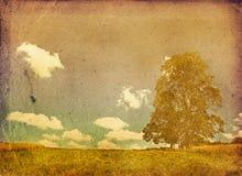 Imagem descorada de uma árvore Imagens de Stock