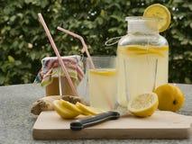 A imagem detalhada de todos os ingredientes necessários cozinhar uma limonada caseiro consiste da água, do limão, do gengibre e d Imagens de Stock