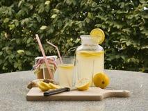 A imagem detalhada de todos os ingredientes necessários cozinhar uma limonada caseiro consiste da água, do limão, do gengibre e d Foto de Stock Royalty Free