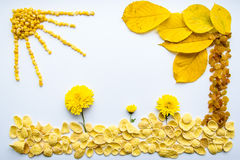 Imagem do alimento, das flores e das folhas em um fundo branco Fotos de Stock