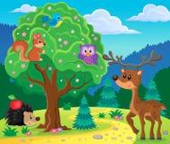 Imagem 4 do assunto dos animais da floresta Imagem de Stock Royalty Free