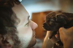 Imagem do cachorrinho pequeno bonito nas mãos do homem novo Fotos de Stock Royalty Free